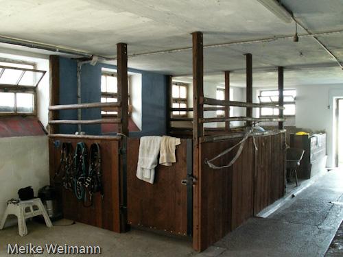 Das ist die Putzbox. Dort drin kann man das Pferd putzen, und andere Pferde und Menschen können ungehindert an einem vorbeigehen.