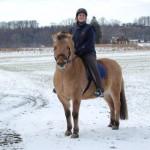 MAnchmal sitze ich tatsächlich AUF dem Pferd.... Joschi und ich